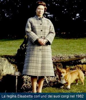 Malattia fa strage dei cani di sandringham assicurazione for Quanto costa la corona della regina elisabetta